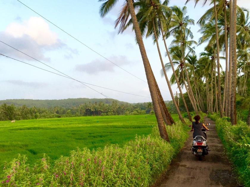 goa monsoon, goa travel guide, offbeat goa