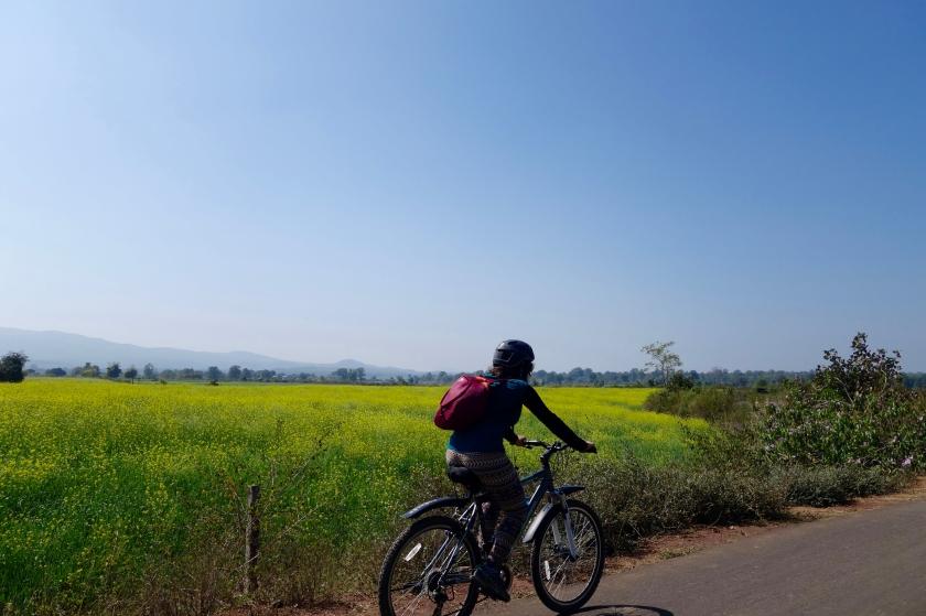 Satpura national park, madhya pradesh travel blog, solo travellers india