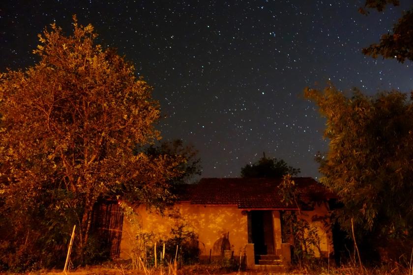Forsyth lodge, forsyth satpura, satpura national park accommodations