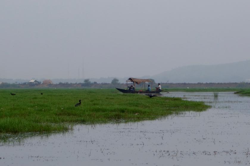 Mangalajodi, orissa ecotour, ecotourism odisha