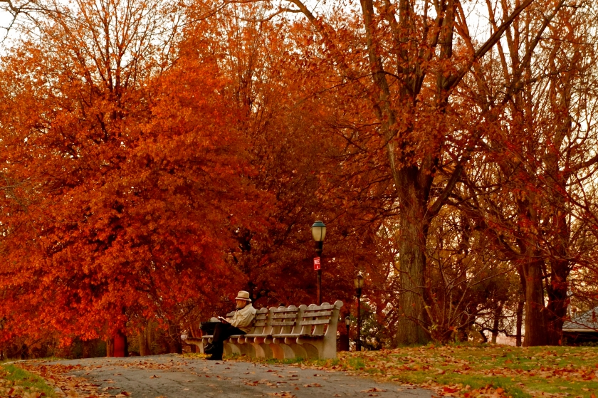 fall colors new york, long term travel, digital nomad lifestyle
